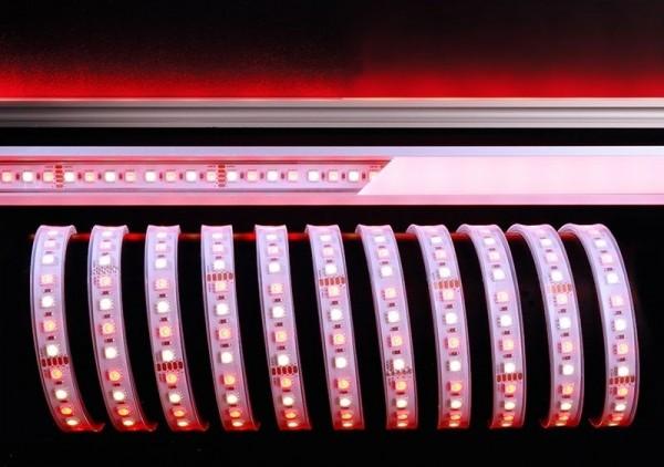 Deko-Light Flexibler LED Stripe, 5050-96-24V-RGB+4200K-5m-Silikon, Kupfer, Weiß, RGB + Neutralweiß