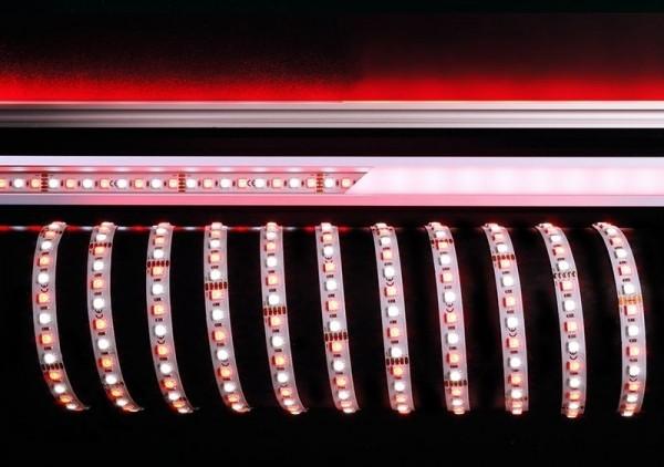 Deko-Light Flexibler LED Stripe, 5050-96-24V-RGB+6200K-5m, Kupfer, Weiß, RGB + Kaltweiß, 120°, 115W